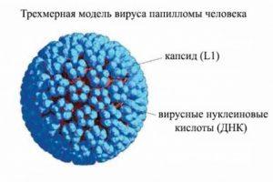 вакцина против папилломы